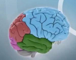 игры интеллекта - польза для ума